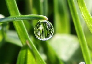 Air Mutlak Bahan Utama Bersuci